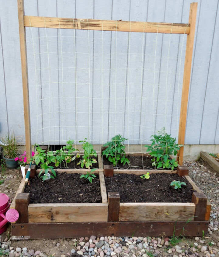 A few 2x4's and a garden net create a nice climbing trellis for the string beans and contain the tomatoes.