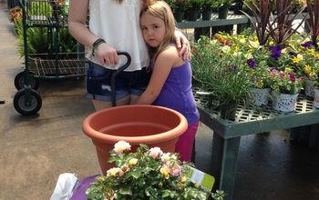 Kids Plant An 'Apricot Drift' Rose Bush