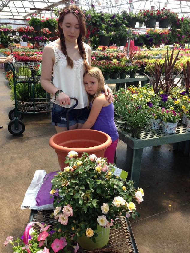 kids plant a drift rose for mom, container gardening, flowers, gardening, The girls choosing Apricot Drift for Mom
