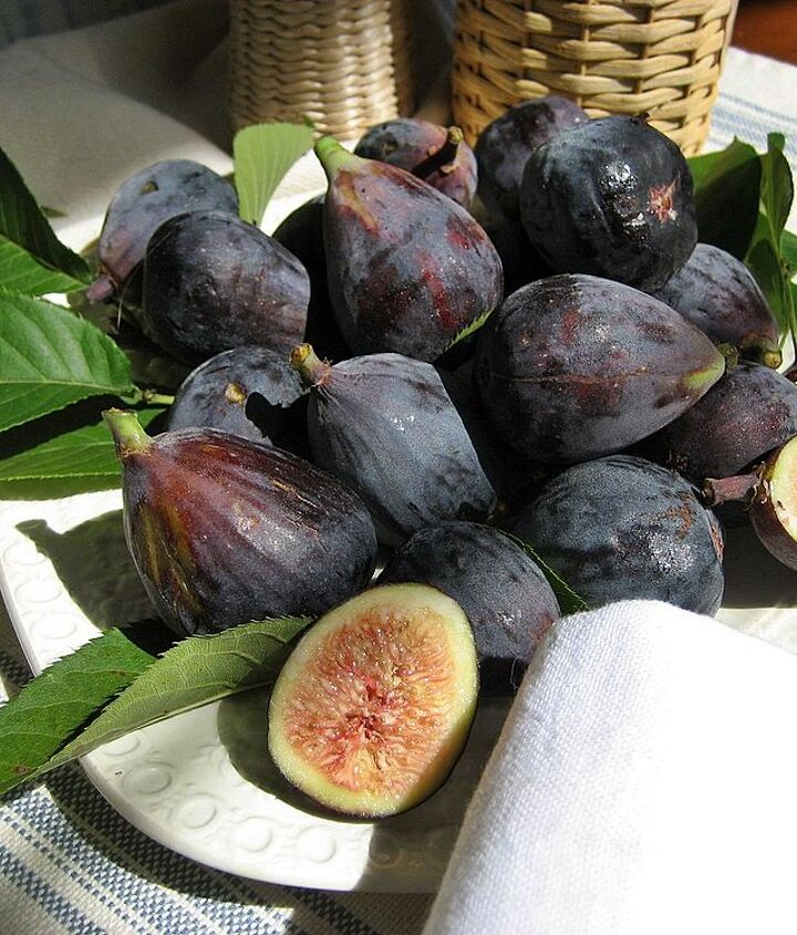 Black Mission figs...yum!