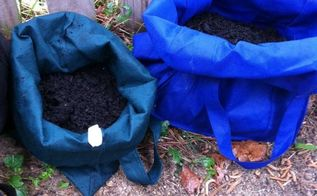 use reusable grocery bags to grow potatoes, gardening, Roll down sides to allow sun and rain to reach potatoes