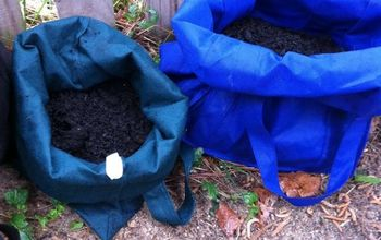 Use Reusable Grocery Bags to Grow Potatoes