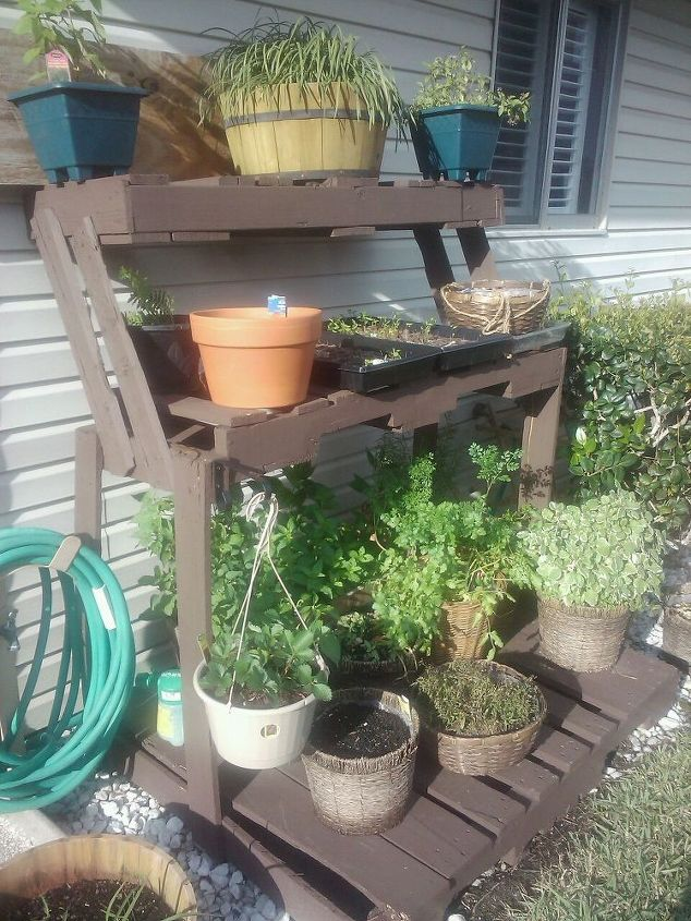 Our herb garden. Pallet craft, my wife always has great re-use ideas ...