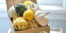 the softer side of fall, seasonal holiday d cor, thanksgiving decorations, A cigar box decoupaged with book pages and scrapbook paper is stuffed full with various gourds