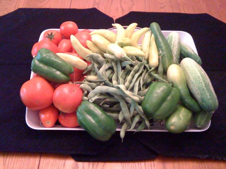 Some examples of vegetables from my garden.