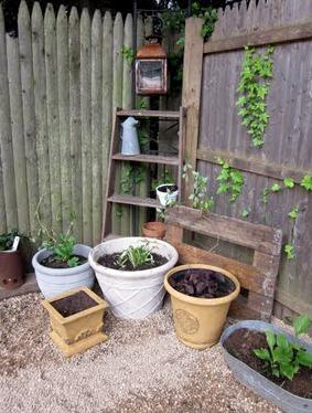 diy fire pit gravel surround, gardening, landscape, outdoor living
