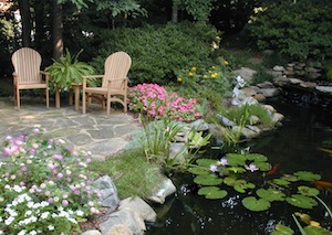 we create experiential landscapes what makes you happy one client recently, flowers, gardening, landscape, A tranquil retreat and wildlife habitat that we created Photo copyrighted all rights reserved Home Garden Design Inc