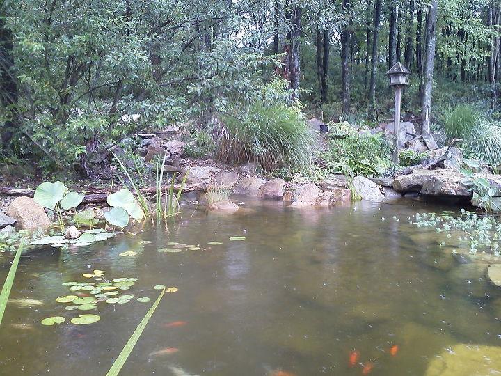 outdoor living water garden, outdoor living, patio, ponds water features