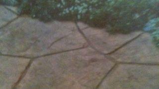 q tile over concrete patio, concrete masonry, patio, pool designs, Idea for pool patio