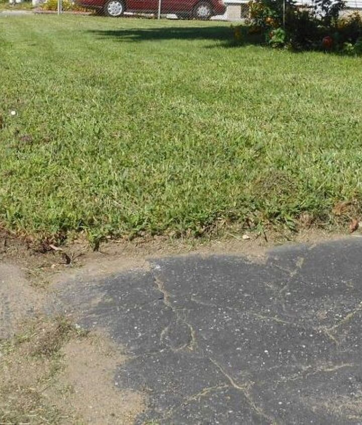 The front lawn looks a bit neater, now,  with  the nice even edge.