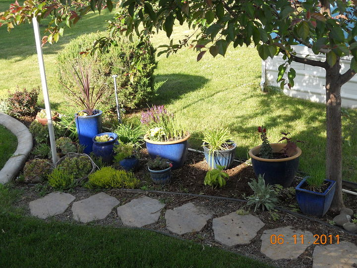 q help with my little garden, flowers, gardening, How can I arrange these pots in a clever attractive way