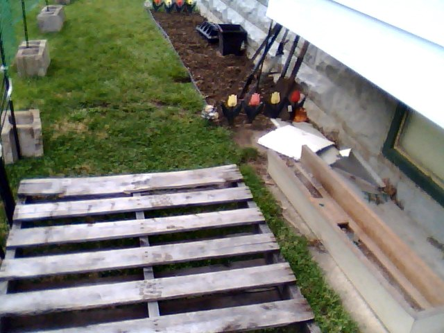 I will place composting bins under the window over hang as place potted tomato plants on the pallets
