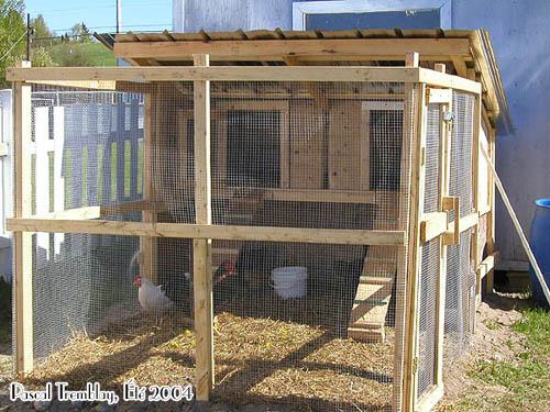 en Coop - Hen Coop - Hen House Building Idea | Hometalk Hen House Design For Many Hens on pet hen, golden laced wyandotte hen, one hen, silver gray dorking hen,