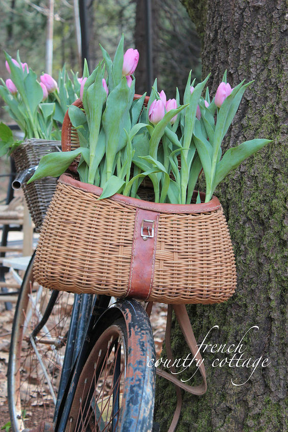 vintage bicycle planter for spring, gardening, repurposing upcycling