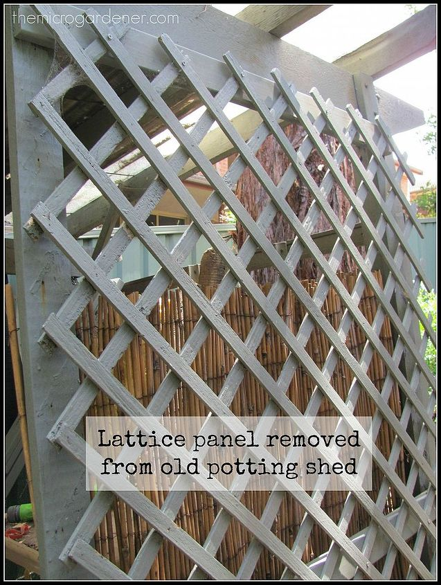 styling a garden fence makeover, fences, flowers, gardening