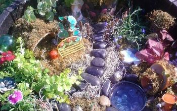 making a fairy garden from objects mostly found at the thrift store, container gardening, crafts, flowers, gardening, repurposing upcycling