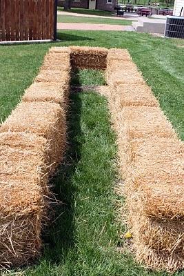 straw bale gardening, gardening, Use straw bales not hay bales