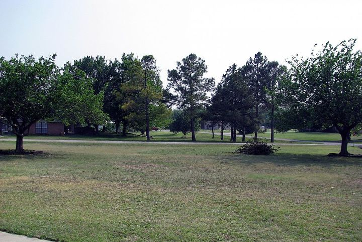 This is our giant yard looking from the front of the house.