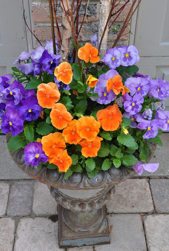 traditional garden urns and contemporary containers container gardening flowers gardening perennials