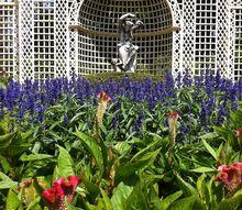 my trip to kingwood center, gardening