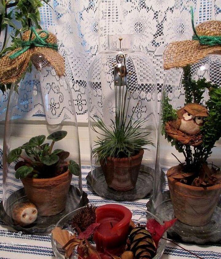 kitchen window display ~ three lamp glass cloches with houseplants http://pinterest.com/barbrosen/