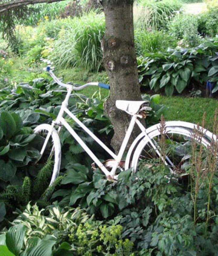 Old bicycle painted white stand out amongst the hostas.