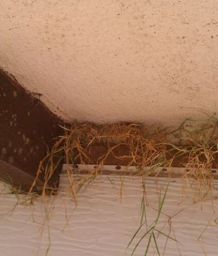 this is underneath my window