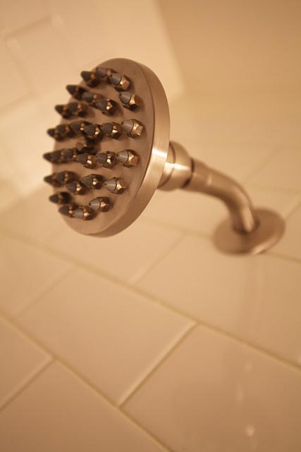 The Danze Parma shower head