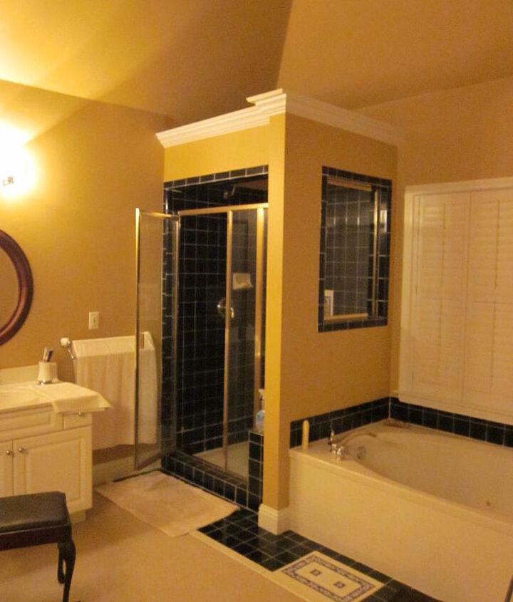 Bathroom Shower Before