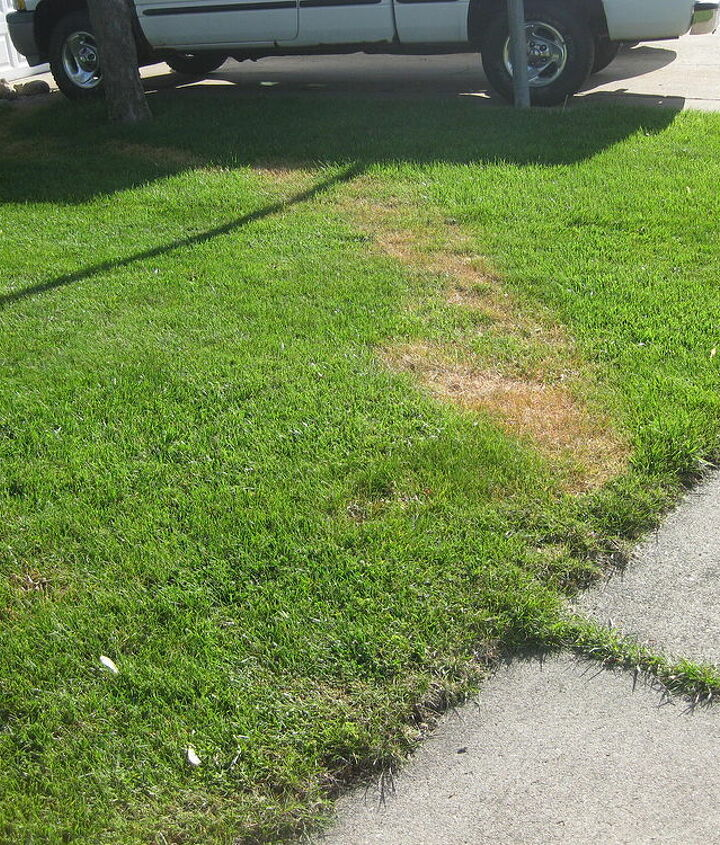 Trail of dead grass from house to street