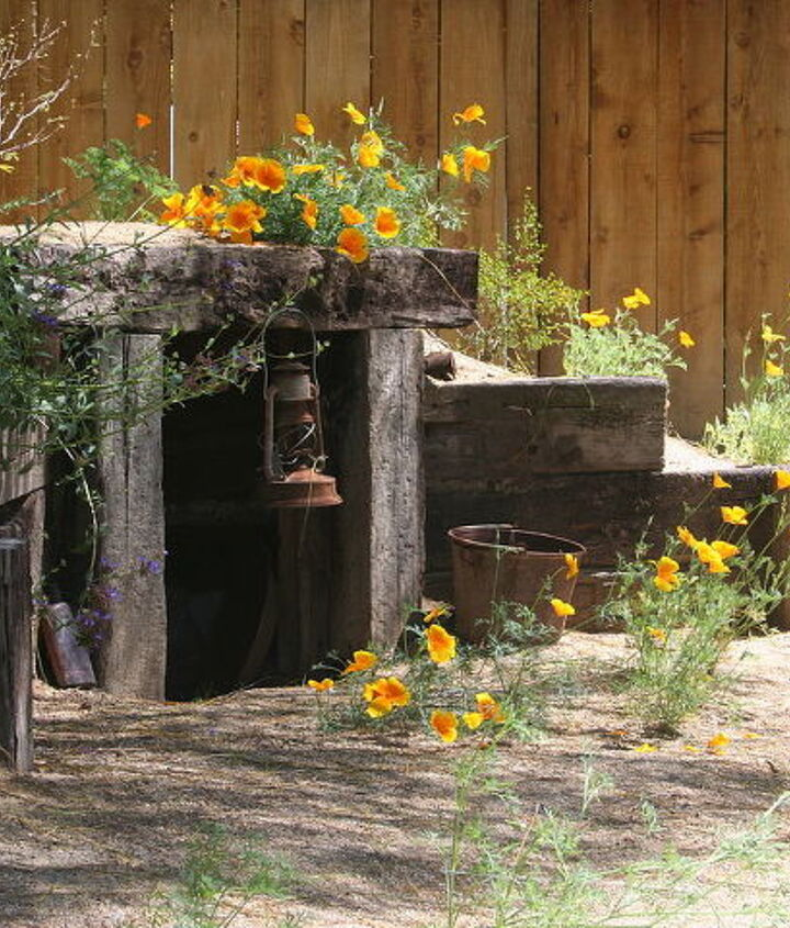 mine shaft with CA Poppies and Sage.