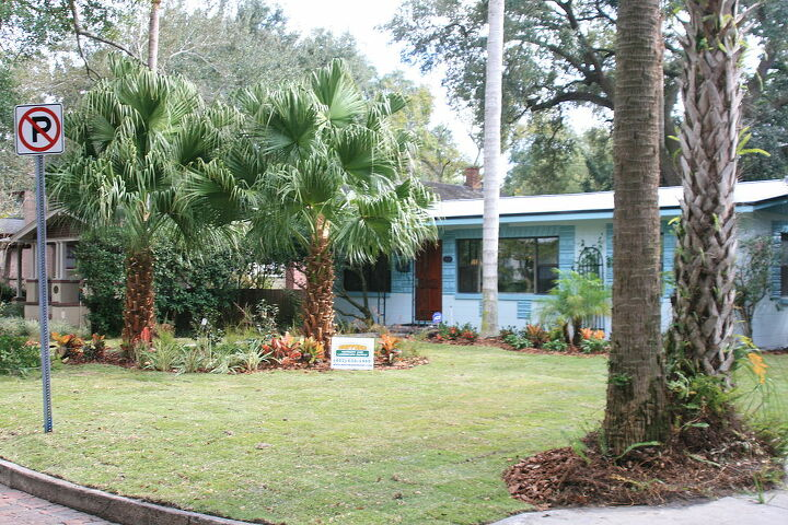 q a project we just finished in downtown orlando this house has large windows in the, gardening, landscape