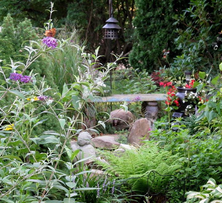 in my garden, gardening, welcome