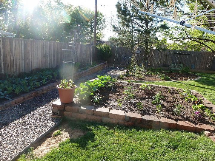 Veggies and cutting garden planted for heat veggies :)
