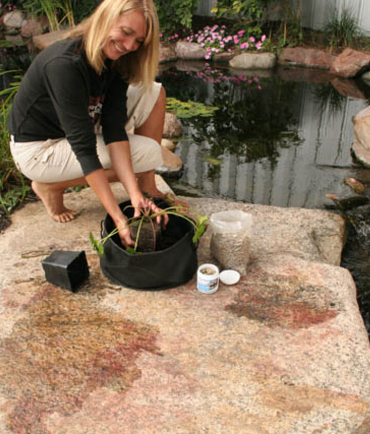 Carefully remove the waterlily from its plastic container and place in the middle of the fabric planter.