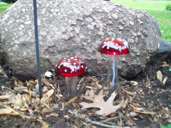 Glass Garden Mushrooms Hometalk