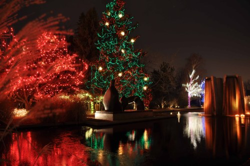 "The former ""blue tree"" at the Denver Botanic gardens dressed in red and green"
