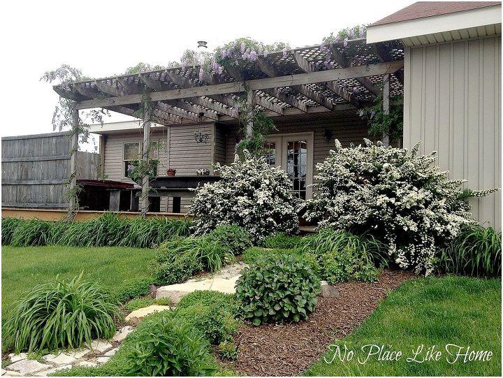 spring garden update, flowers, gardening, perennials, Back garden Wisteria is in bloom
