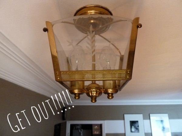 Diy chandelier with shade for under 20 hometalk diy chandelier with shade for under 20 diy home decor lighting the mozeypictures Choice Image