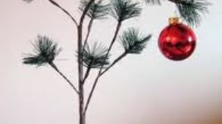 q artificial christmas tree recommendations, christmas decorations, seasonal holiday decor, Charlie Brown Tree