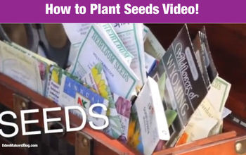 How to Start Seeds to Save Money on Plants For Your Garden: Gardening Tips