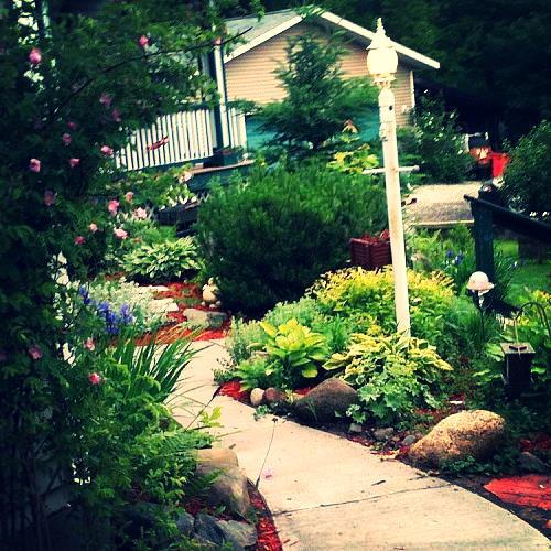 my gardens, gardening