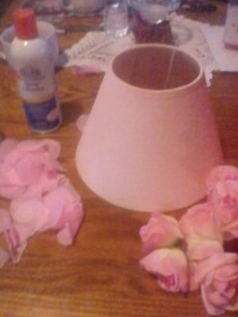 I painted a really cheap shade with Ballet Slipper Spray paint