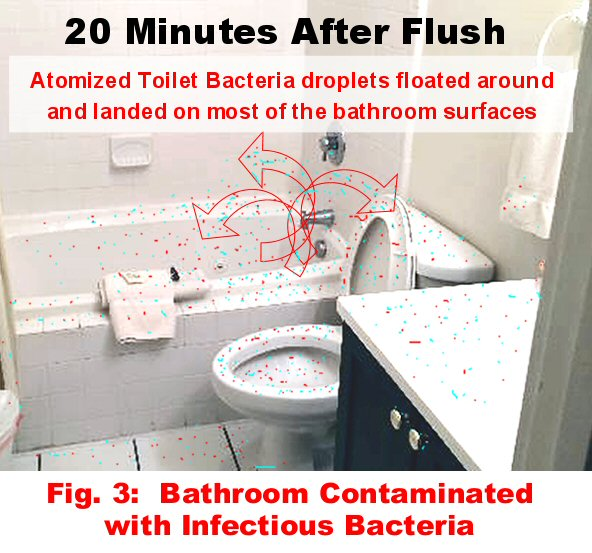 bathrooms why routinely disinfect the walls, bathroom ideas, cleaning tips