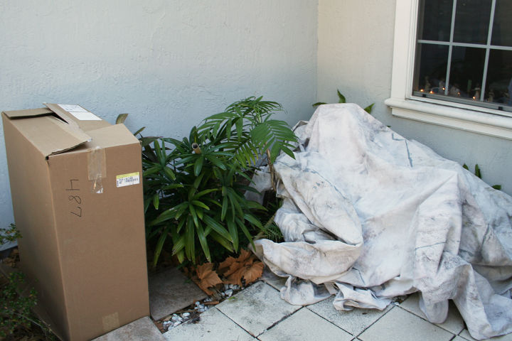 A cardboard box is one of the best things you can use to protect your plants. (Photo via therainforestgarden.com)
