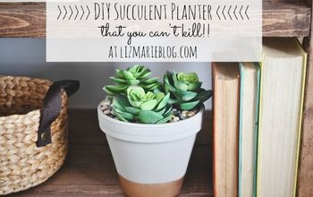 diy succulent planter that you can t kill, crafts, flowers, gardening, succulents, DIY succulent planter