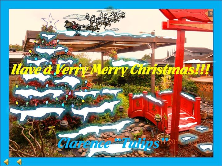 "Have a VERRY MERRY CHRISTMAS in Hometalk land from Mililani, Hawaii!!! Clarence ""Tulips"""