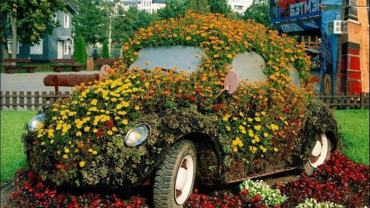 http://www.wallsave.com/wallpaper/1366x768/wolkswagen-beetle-flowerbed-volkswagen-cars-free-hd-274058.html