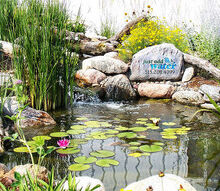i hope you can find some time for yourself to enjoy mother nature on this beautiful, outdoor living, ponds water features, To learn more about our pond construction https www facebook com notes just add water pond fish koi pond backyard landscape pond aquascape ecosystem pond water garden 478461102188914 Aquascape Ecosystem Pond Water Garden Koi Fish
