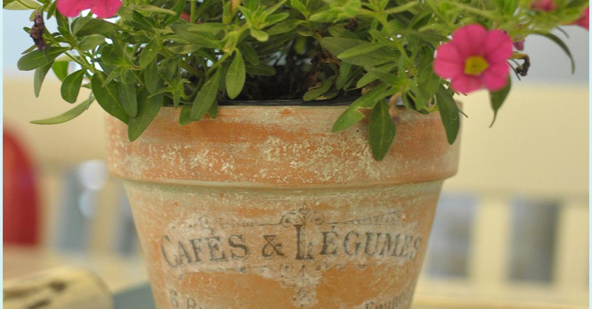 french inspired terra cotta flower pots